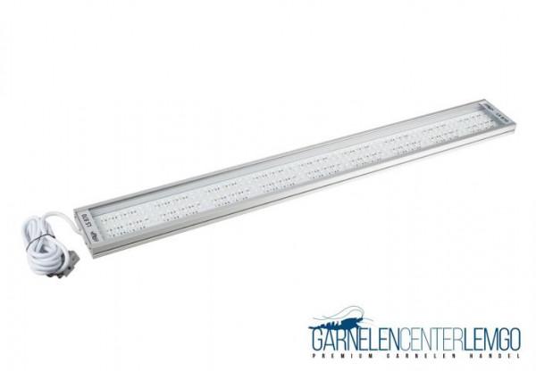 Solid LS 870 LED
