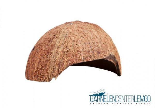 Kokosnuss Schale - Halbschale
