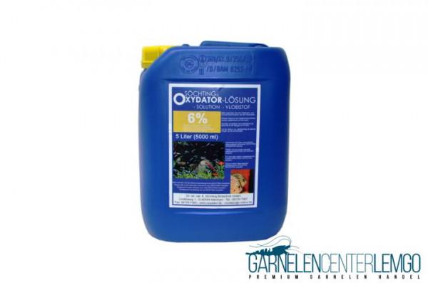 Söchting Oxydator Lösung 6% - 5 Liter