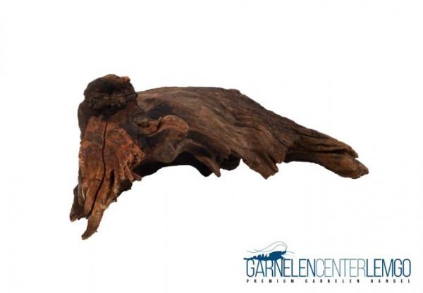 "China Driftwood Wurzel ""CDW1"""