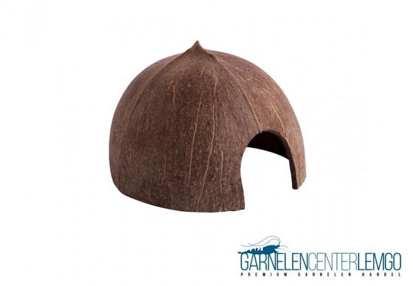 Kokosnuss Schale / Höhle