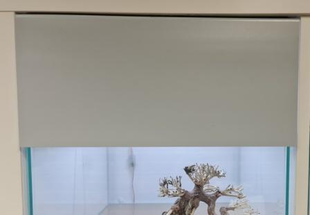 Basic Blende Grau matt für Kallax Regal