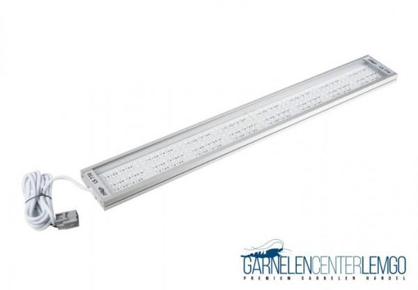 Solid LS 770 LED