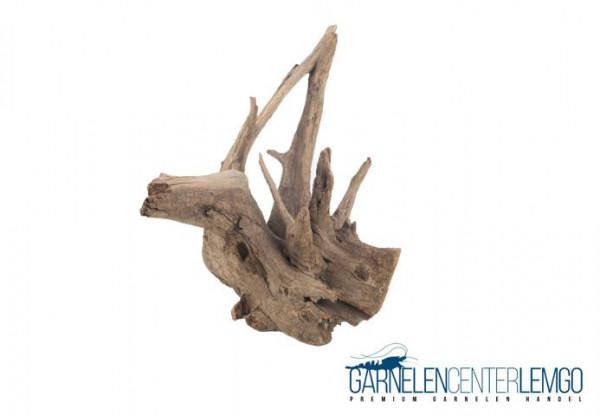 Pinwood Wurzeln / Corbo Root